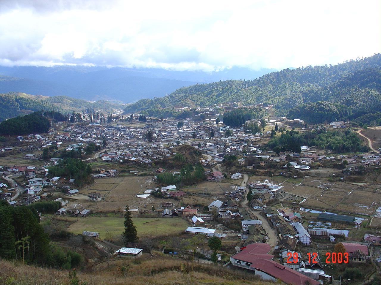 Ziro Town View