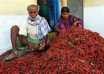 Andhra pradesh villager