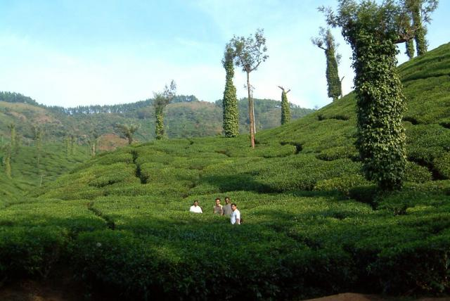 Chikmagalur tourism