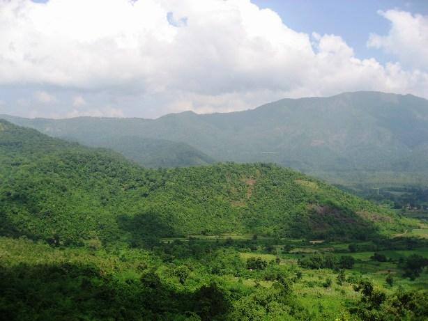 Nellore View