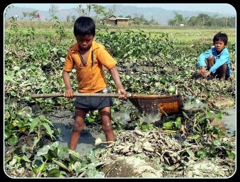 Nagaon Assam
